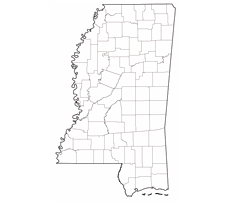 Study in Mississippi