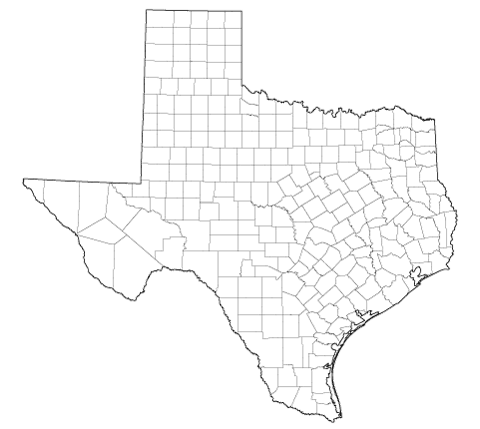 Study in Texas